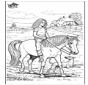 A cavallo 5