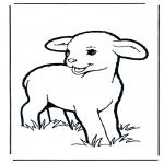 Disegni da colorare Animali - Agnello 1