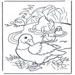 Disegni da colorare Animali - Anatre