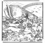 Arca di Noè 5