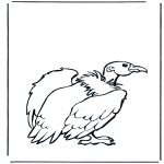 Disegni da colorare Animali - Avvoltoio