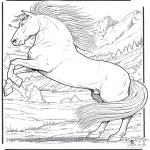 Disegni da colorare Animali - Cavallo 5