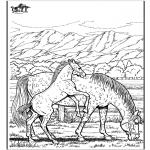 Disegni da colorare Animali - Cavallo 6