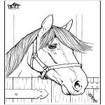 Disegni da colorare Animali - Cavallo 7