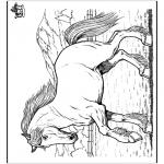 Disegni da colorare Animali - Cavallo 8