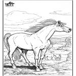 Disegni da colorare Animali - Cavallo 9