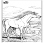 Cavallo 9