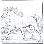 Disegni da colorare Animali - Cavallo al galoppo
