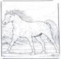 Cavallo al galoppo