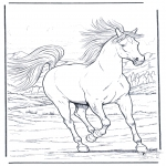 Disegni da colorare Animali - Cavallo galoppante
