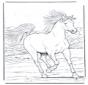 Cavallo galoppante