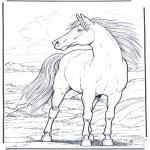 Disegni da colorare Animali - Cavallo nel vento