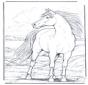 Cavallo nel vento