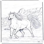 Disegni da colorare Animali - Cavallo nellacqua