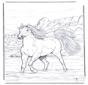 Cavallo nellacqua