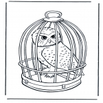 Disegni da colorare Animali - Civetta delle nevi