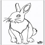 Disegni da colorare Animali - Coniglio 4