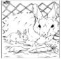 Disegna seguendo i numeri ' coniglio