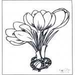Disegni da colorare Vari temi - Fiori di primavera 1