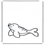 Disegni da colorare Animali - Foca 1