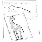 Disegni da colorare Animali - Giraffa e Foca