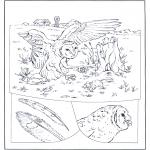 Disegni da colorare Animali - Gufo a caccia