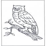Disegni da colorare Animali - Gufo sul ramo