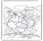 Il gallo