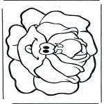 Disegni da colorare Vari temi - Lattuga