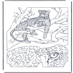 Disegni da colorare Animali - Leopardo 1