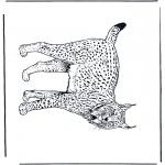Disegni da colorare Animali - Lince