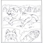 Disegni da colorare Animali - Lupo nella neve