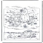 Disegni da colorare Animali - Marmotta