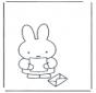 Miffy con una lettera