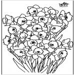 Disegni da colorare Vari temi - Narciso