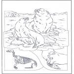 Disegni da colorare Animali - Otarie