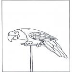 Disegni da colorare Animali - Pappagallo 3