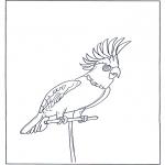 Disegni da colorare Animali - Pappagallo 4