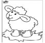 Pecorella 4