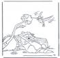 Procione e colibri