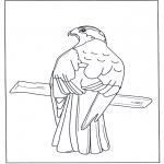 Disegni da colorare Animali - Rapace sul ramo
