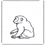 Disegni da colorare Animali - Scimmia 2