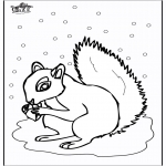 Disegni da colorare Animali - Scoiattolo 5