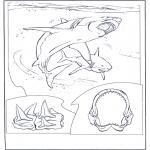 Disegni da colorare Animali - Squalo bianco