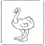 Disegni da colorare Animali - Struzzo 1