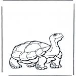 Disegni da colorare Animali - Tartaruga terrestre 2