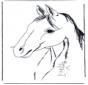 Testa di cavallo 3