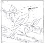 Unisci i puntini - uccelli