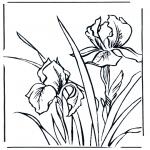 Disegni da colorare Vari temi - Violette