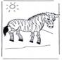 Zebra per bambini